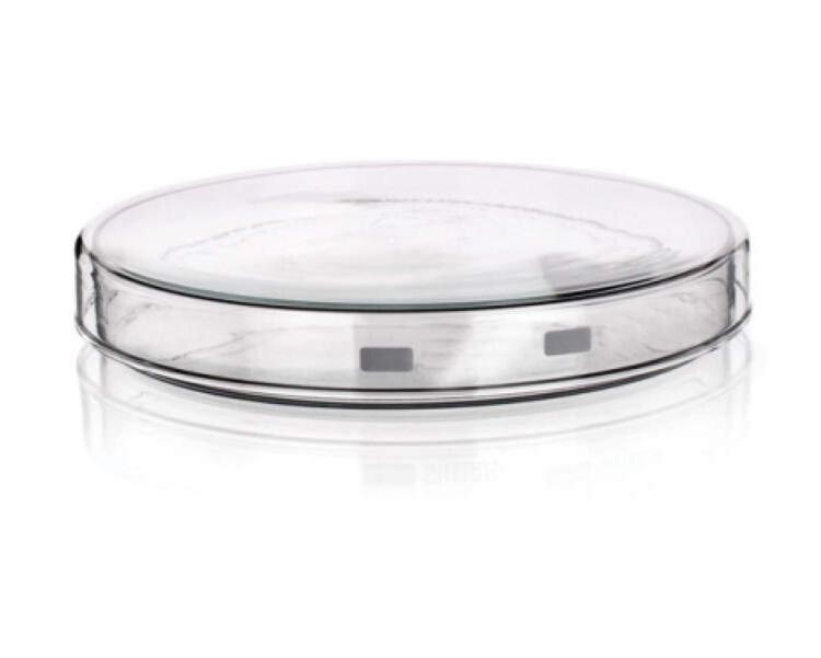 Placas petri vidrio