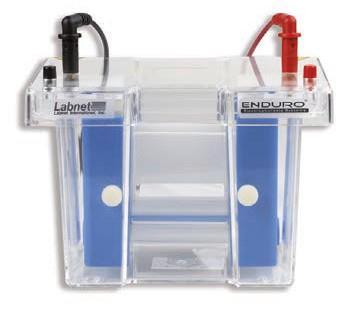 cubeta electroforesis vertical